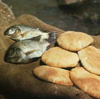 loaves-fishes-tilapia002.jpg
